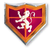 website-shield